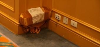 Diệt mối bằng hộp bẫy mối