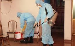 Tổng hợp các cách diệt muỗi hiệu quả