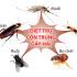 Diệt muỗi chuyên nghiệp TPHCM
