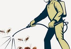 Dịch vụ diệt muỗi tại Vũng Tàu uy tín