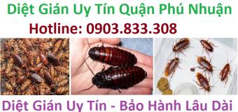 Diệt gián uy tín Quận Phú Nhuận