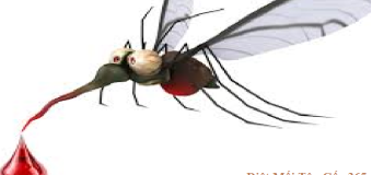 Diệt muỗi 365